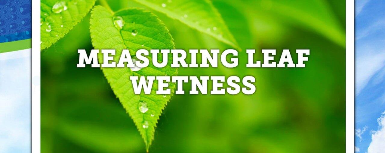 measuring leaf wetness